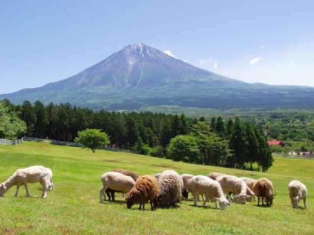 吉田羊 ファンがブログ再開呼びかける「羊さん、再開しようよ」