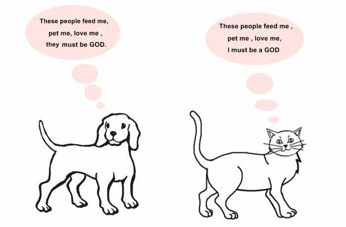 「猫の十戒」が「犬の十戒」と比べて上から目線でおもしろい