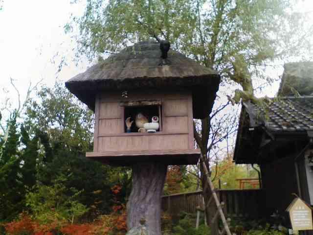 ツリーハウスの画像が集まるトピ