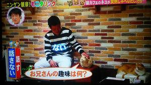 TBS系「モニタリング」の制作会社が7100万円脱税!東京国税局が告発