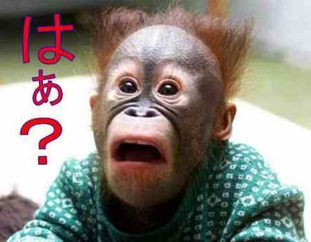 女子大生刺傷事件の容疑者、橋本愛の熱狂的なファンを辞めた意外な理由…吉田豪「何が自己防衛になるかわからないものだ」