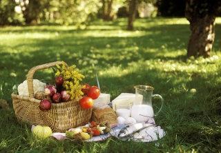 ピクニック好きな人