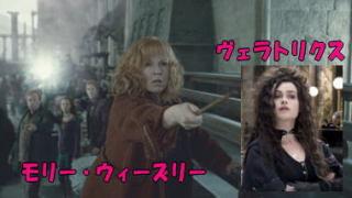 「ハリーポッター」が好きな人(マグル)