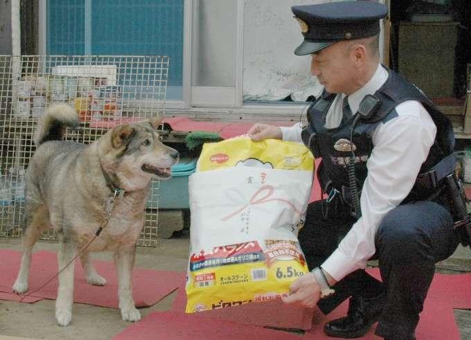 「ご主人を助けて!」お手柄犬、警察官を誘導!倒れた飼い主救う/千葉