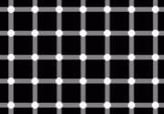 白黒の画像