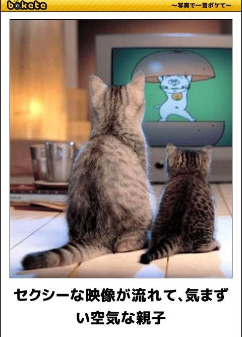 テレビを観ていて気まずくなるシーン