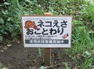 猫嫌いな人 苦手な人集まれ〜 Part2