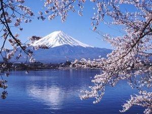 日本人で良かった!と思える画像を貼ろう!