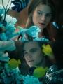 映画・ドラマの好きなシーンの画像を貼るトピ