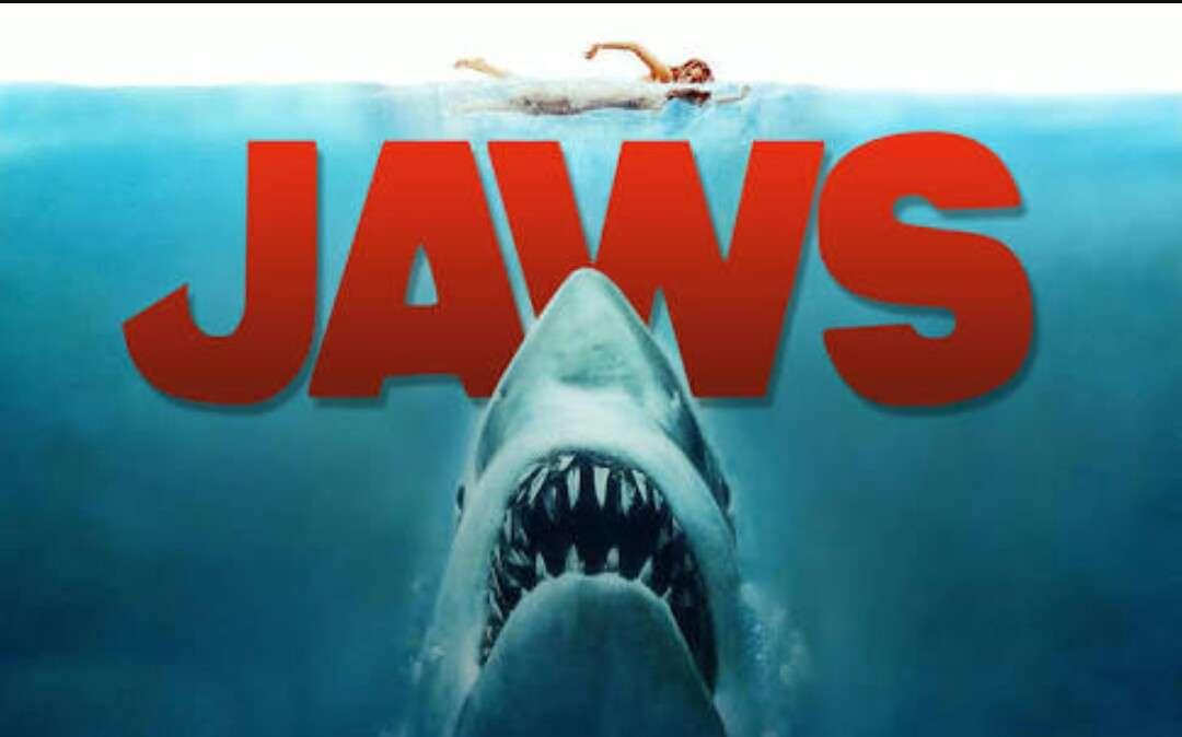 夏に見たい映画は何ですか?