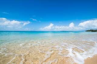 今年の夏は海やプール行きますか?