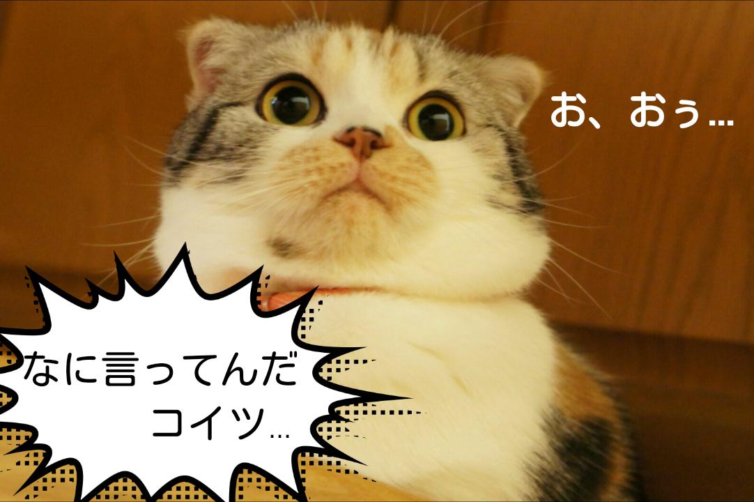 """小嶋陽菜の美背中にドキッ! 黒ドレスで""""クール""""なこじはるに"""