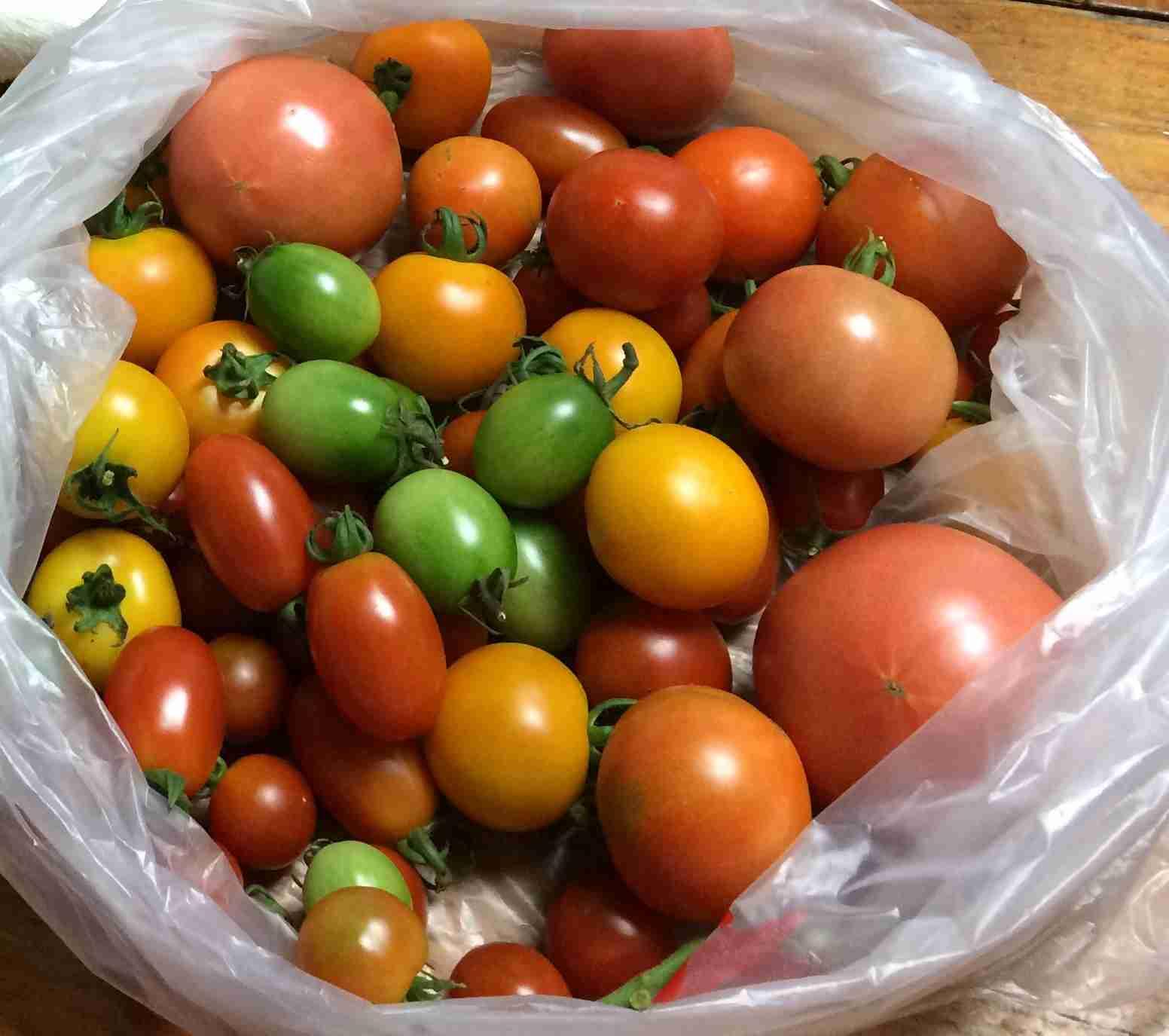 トマト好きな人集合!!