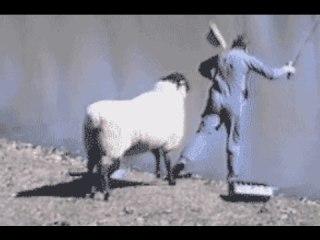 セリフ付で動物画像を貼るトピ