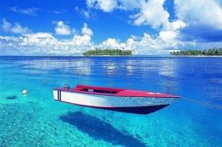 海に行きたくない方、どんな理由ですか?