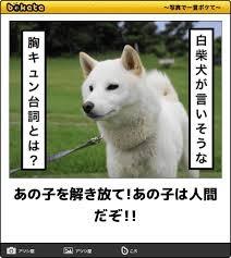 【実況・感想】金曜ロードSHOW!「バケモノの子」