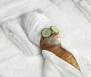 寝る前のスキンケア