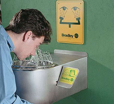 目と心を洗うトピ