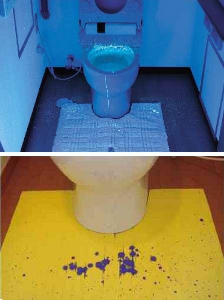 ぶっちゃけ毎日トイレ掃除しますか?