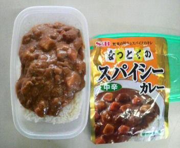 助けて下さい!!夏 丼 弁当レシピ