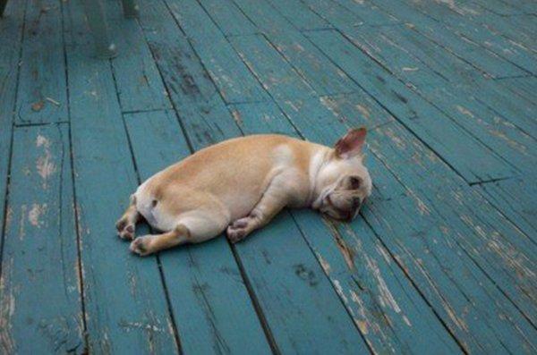 1日暇、でも家でぐーたらするのは飽きた。
