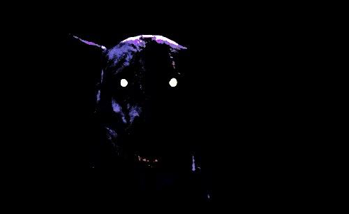 デヴィッド・ベッカム、愛犬を溺愛の一方で野生動物を狩猟する姿に非難の声