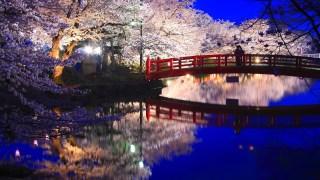美しい日本語を挙げていくトピ