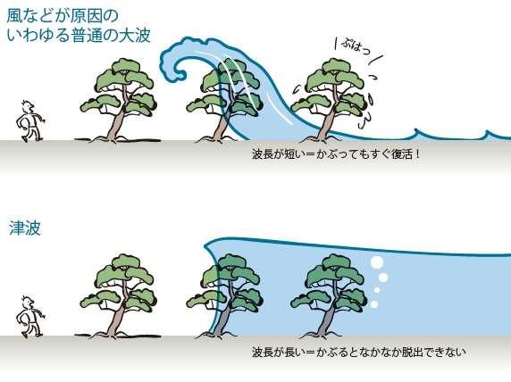 津波から身を守るために知っておきたい9つの知識