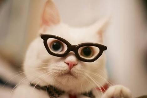 メガネの時のメイク