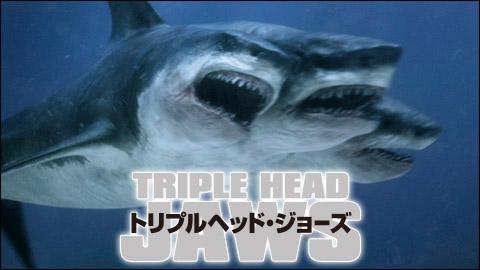 【やや閲覧注意】頭が2つ尻尾は一つの「奇形ザメ」が増加中らしい