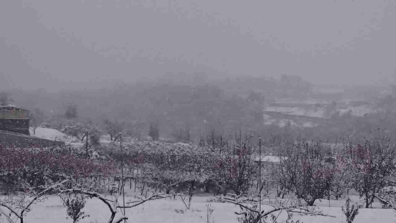 雪が降っている地域の方、現況報告をお願いします。