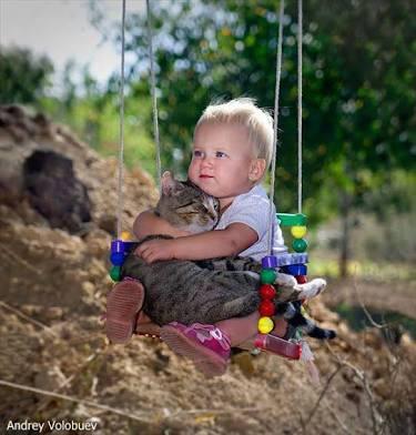 【画像】動物以外の癒し画像ください