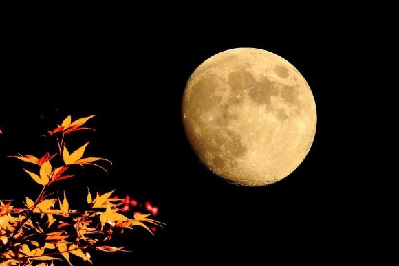 【画像】月の世界
