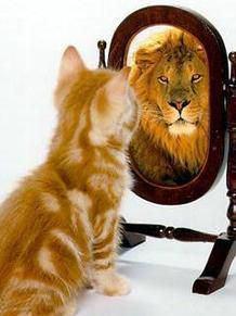 動物の画像で今の気持ちを表すトピ。
