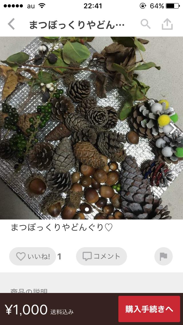 メルカリで「ドングリ」が300円で売れる理由