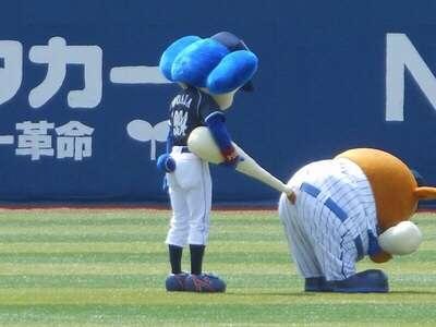 野球のマスコットが好きな方