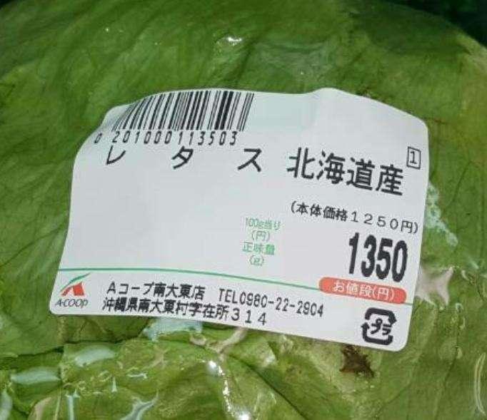 レタス、キャベツ、白菜… 価格高騰で庶民悲鳴「野菜は貴族の食べ物」