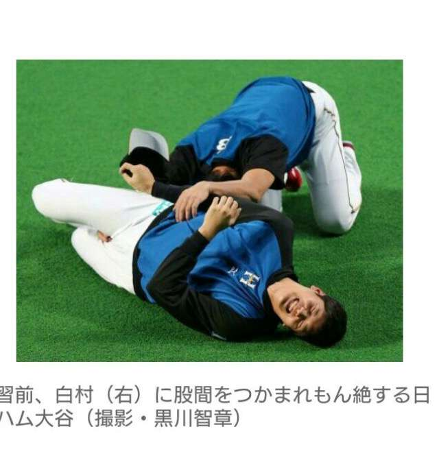 大谷翔平選手を語りたい!