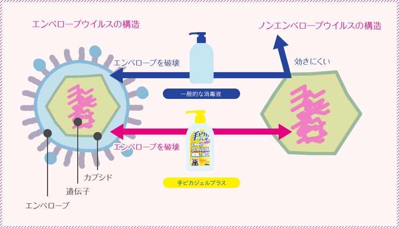 ノロウイルス対策