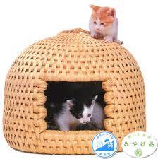 オススメの猫用品