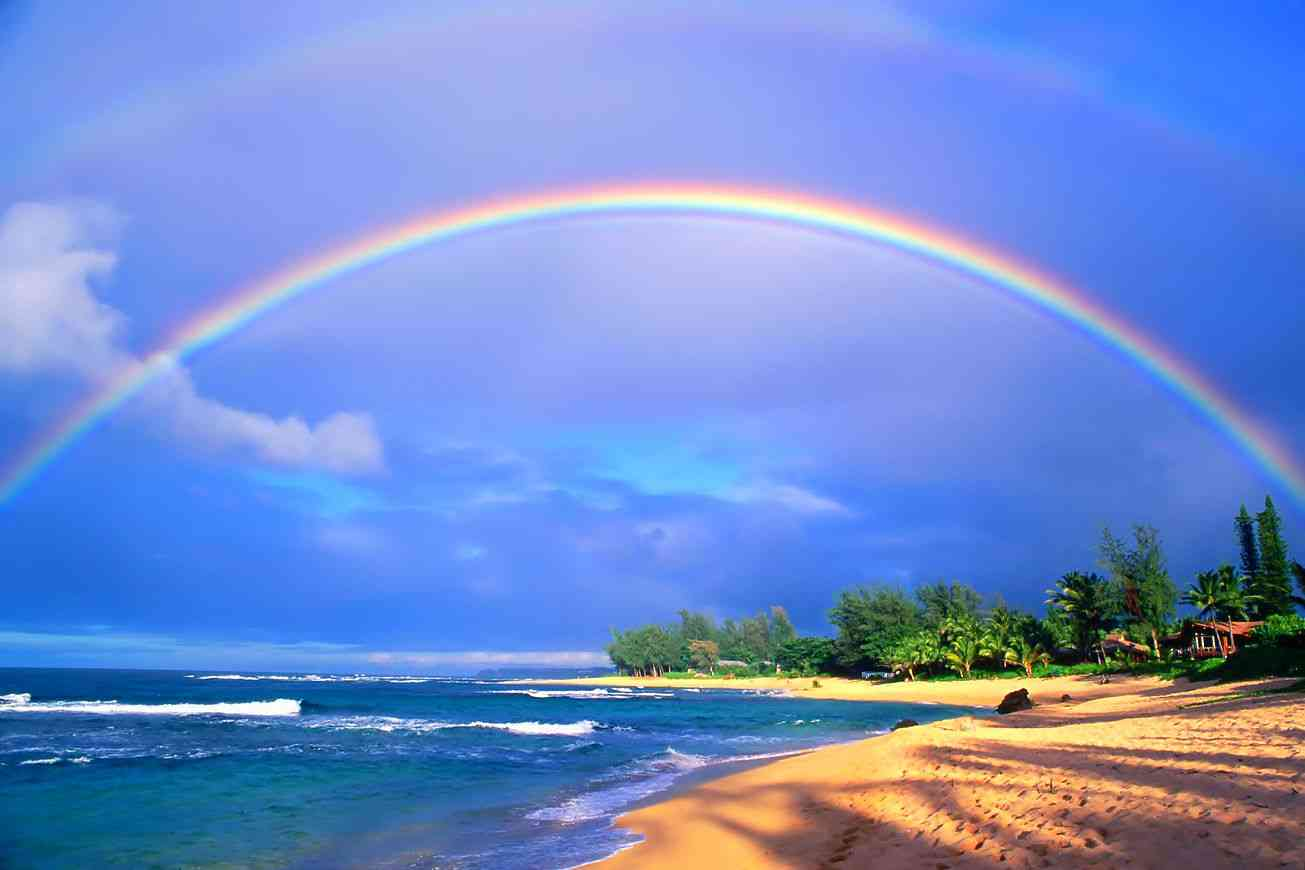 ハワイのおすすめスポット&お土産