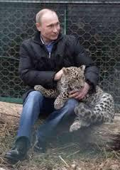 プーチン露大統領に贈った秋田犬「ゆめ」生きていた!日本メディアのインタビューに登場