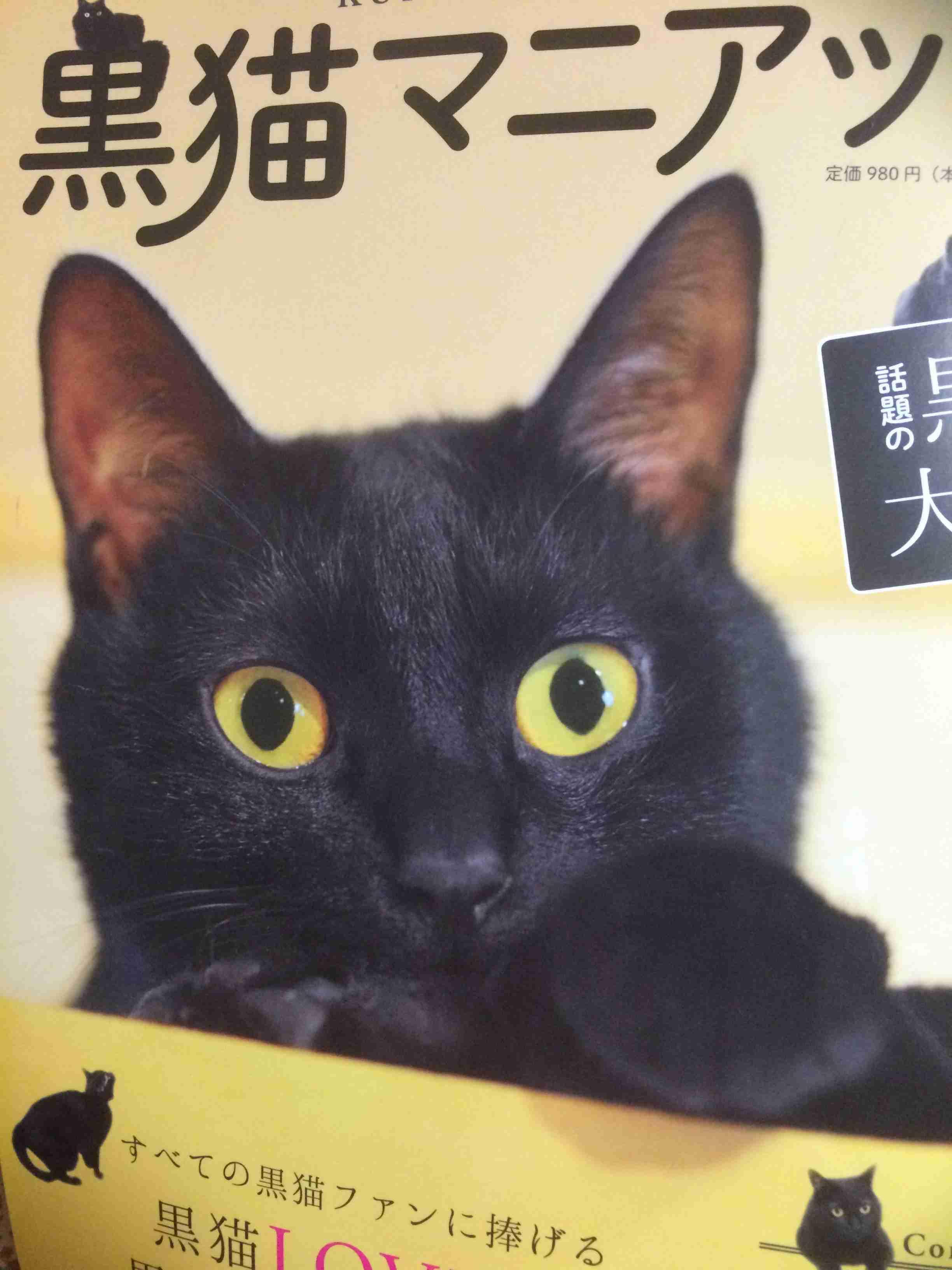 黒猫を貼るトピ