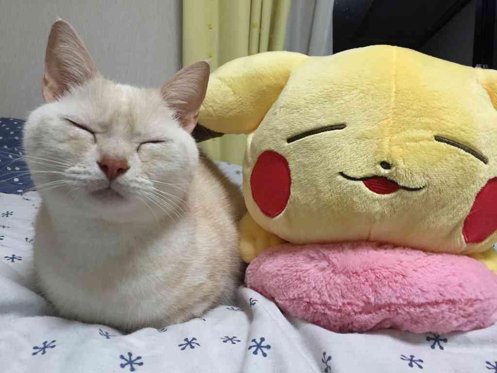 【雑談】寝たくない人話しませんか?