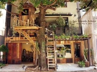 行ってみたいテーマカフェ