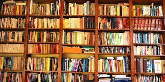 読書の時間帯と体勢