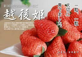 イチゴが好きな人が集まるトピ