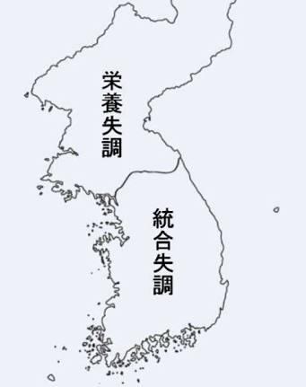 韓国旅行について