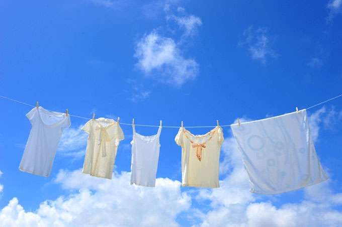 洗濯機の乾燥機能を使う頻度