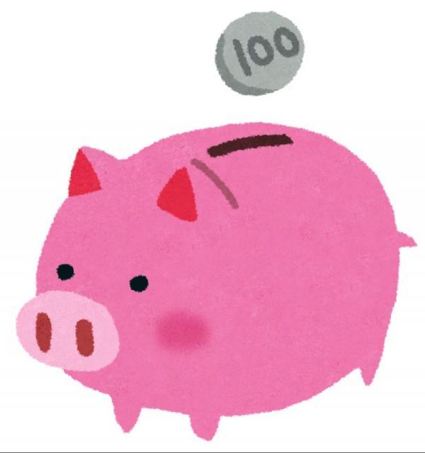 2017年、貯金して買いたい物はなんですか?